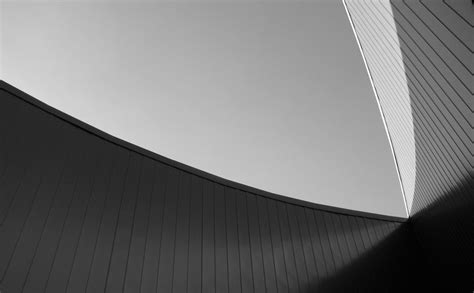 Free Images : wing, light, abstract, black and white